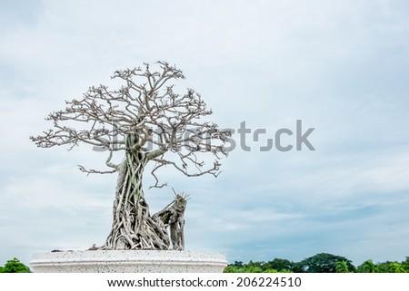 dried bonsai with blue sky - stock photo