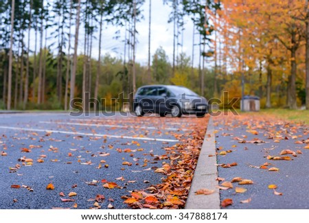 Dried brown and colorful red autumn or fall leaves lying scattered on the asphalt in a parking lot in a concept of seasons, low angle view along the curb - stock photo