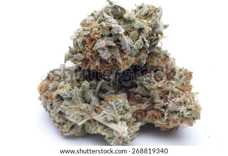 Dried Buds of the Marijuana or Cannabis Plant, on White  - stock photo