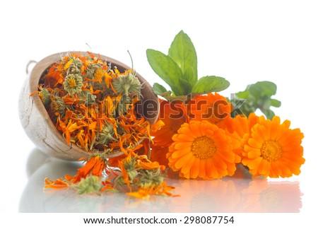 dried calendula flowers on a white background - stock photo