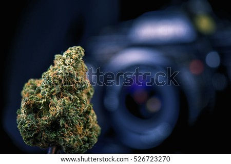 Dried cannabis bud in front of digital camera lens - marijuana photography concept