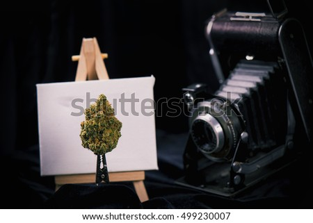 Dried cannabis bud with easel and vintage camera on black background
