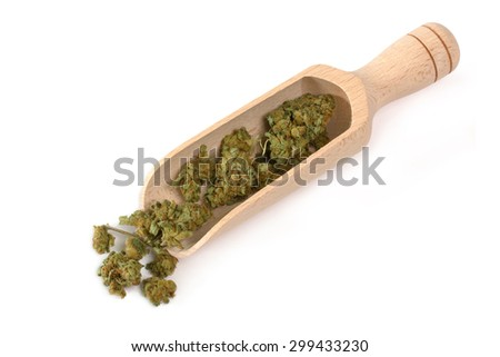Dried cannabis buds on a wooden scoop