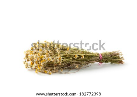 Dried chamomile on white background
