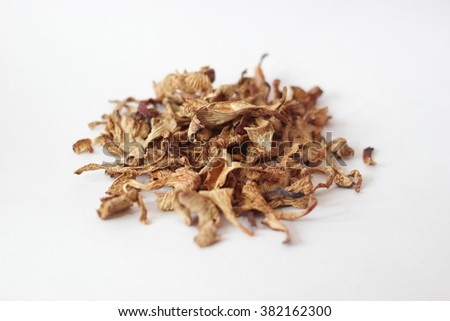 Dried chanterelle on a white background, mushrooms on a white background. - stock photo