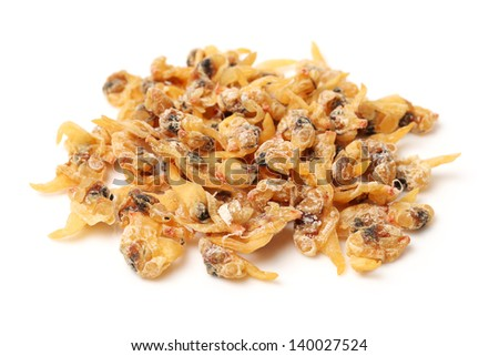 Dried clam meat on white background - stock photo