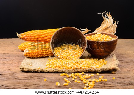 Dried corn stock images royalty free images vectors shutterstock dried corn seeds in wooden bowl on wooden boardagriculture product ccuart Choice Image