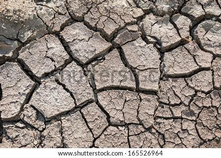 Dried earth - stock photo