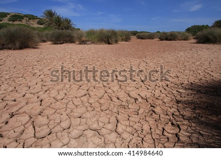 Dried earth. Desert with rolling field and trees in the background. The Eastern part of the island of Crete, Greece
