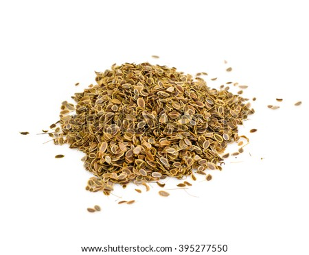 Dried Fennel Seeds Studio Photo - stock photo
