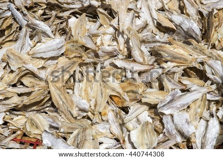 Frozen anchovies fish supermarket stock photo 535969276 for Stock fish for sale