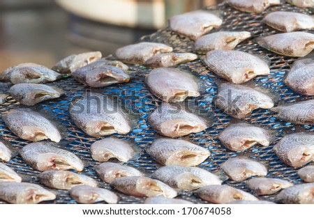 dried fish for sale at thai local market - stock photo