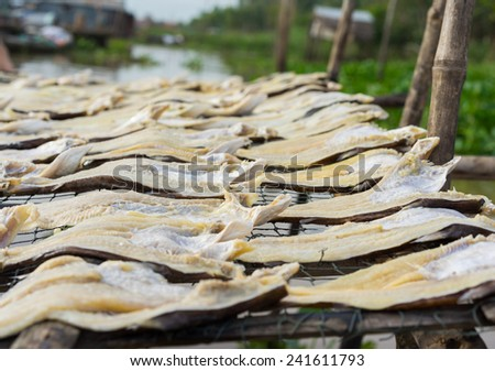 Dried fish, made by drying outdoor naturally under sunlight in Mekong delta, Vietnam
