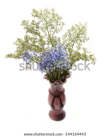 dried flowers in a vase on a white background