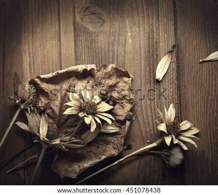 Dried Flowers on a wooden background Autumn Still Life - stock photo