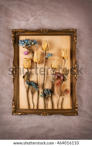 Dried flowers on antique frame