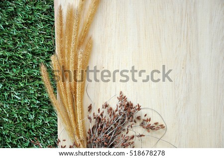Dried flowers on blank wooden board with green grass background