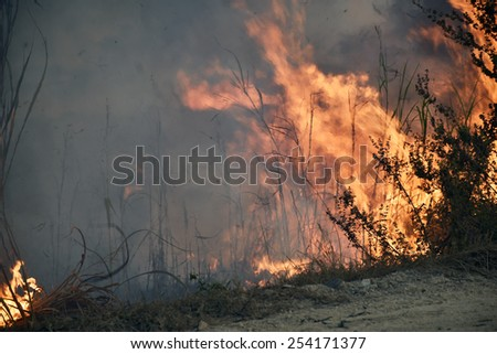 Dried grasses burning on roadside create a lot of smoke