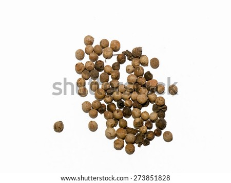 Dried herb, Streblus asper seeds, on white background.