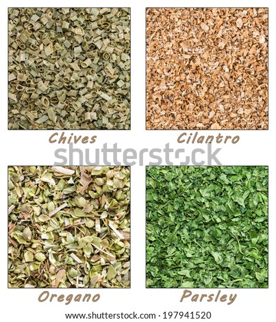 Dried Herbs (Chives, Cilantro, Parsley, Oregano) as tiles - stock photo