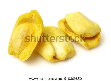 jackfruit stock images, royaltyfree images  vectors  shutterstock, Beautiful flower