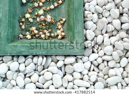dried jasmine among white stone - stock photo