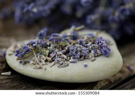 Dried lavender flowers on a rock - stock photo