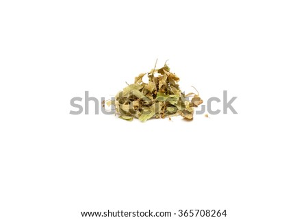 Dried leaves of linden - stock photo