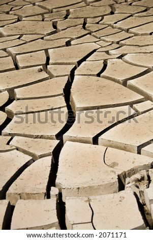 Dried mud cracks along wash in southern Nevada