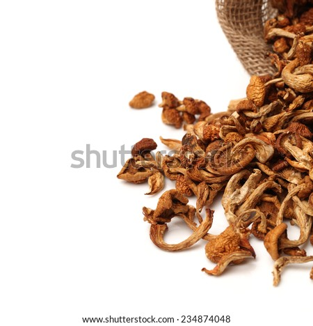 dried mushroom on white background