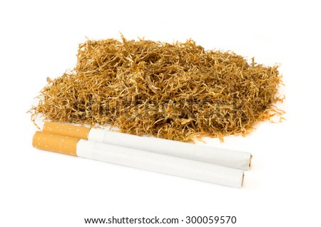 Dried of tobacco and cigarettes isolated on white background - stock photo