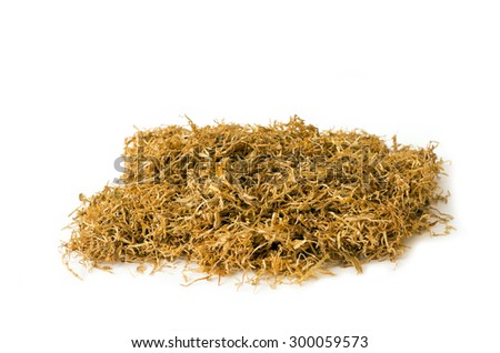 Dried of tobacco isolated on white background