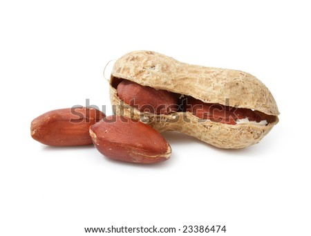 dried peanut fruits  isolated on white background