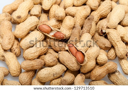 Dried peanuts in closeup on the white background - stock photo