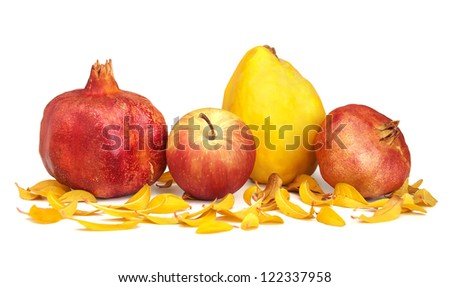 Dried pomegranates, apple, quince and leaves of pomegranate over a white background. - stock photo