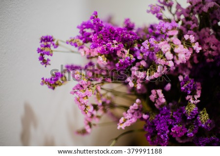 dried purple flowers