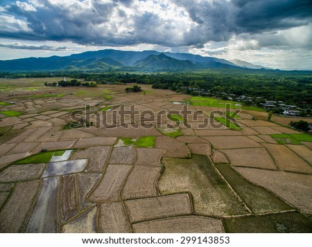 Dried rice field top view from drone northern Lampang, Thailand