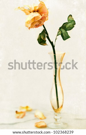 Dried Rose Antique Crystal Bud Vase Stock Photo Royalty Free