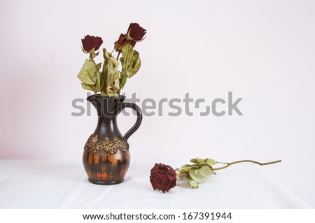 dried rose still life - stock photo