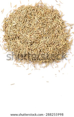 Dried rosemary herb leaves over white background