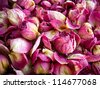 dried roses background - stock photo