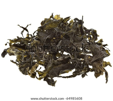 dried seaweed kelp Isolated on white background - stock photo