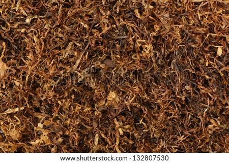 dried smoking tobacco close-up macro view - stock photo