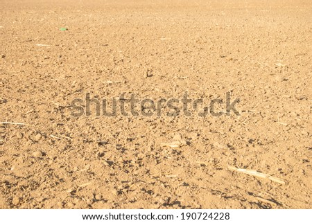 dried soil in countryside