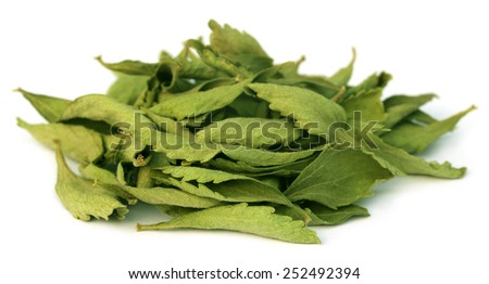 Dried Stevia leaves over white background - stock photo