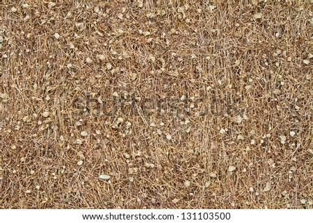 Dried  Tobacco Background - stock photo