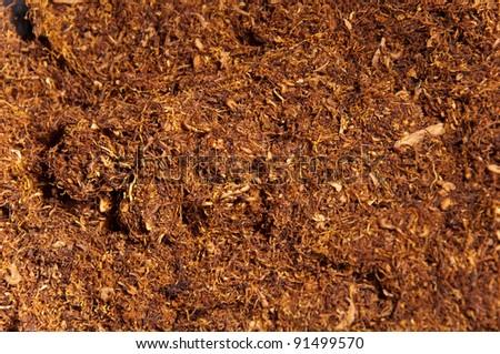 dried tobacco smoking - stock photo