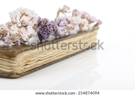 Dried violet flowers on old book.Selective focus with a shallow depth of field. Free space on the right hand side of the frame. - stock photo