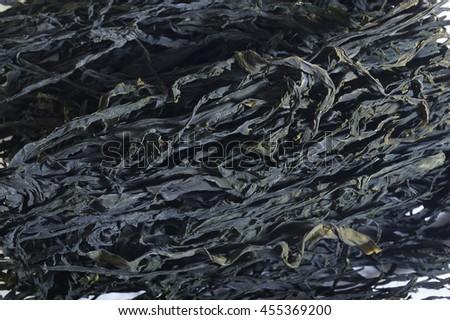 dried wakame background - stock photo