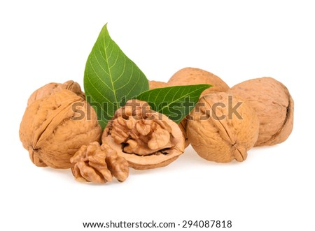 Dried walnuts with leaves isolated - stock photo